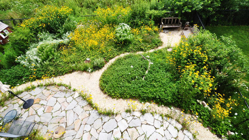 Featured Project: Oak Ridges Native Species Garden